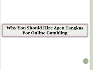 Why You Should Hire Agen Tangkas For Online Gambling