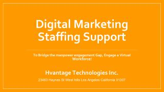 Digital Marketing Staffing Support