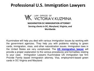 Professional U.S. Immigration Lawyers