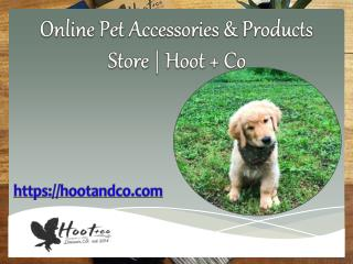 Online Pet Accessories & Products Store | Hoot Co