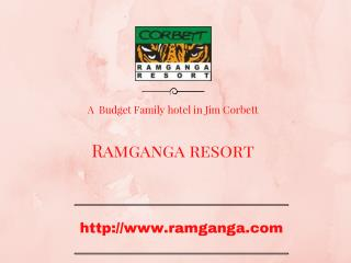 Budget Family Hotels Near Jim Corbett National Park