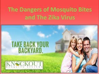 The Dangers of Mosquito Bites and The Zika Virus
