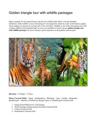 Golden triangle tour with wildlifepackages