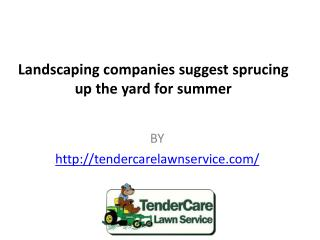 Landscaping companies suggest sprucing up the yard for summer
