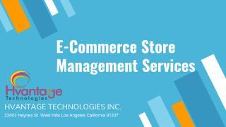 E commerce store management services (1)