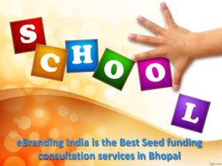 eBranding India Consultancy is the Best Way to Get an Seed Funding for Business in Jaipur