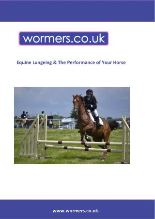 Equine Lungeing & the Performance of your Horse