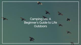 Camping 101- A Beginner's Guide to Life Outdoors