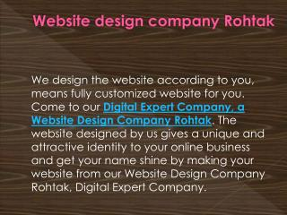 Website design company rohtak, Affordable seo service rohtak