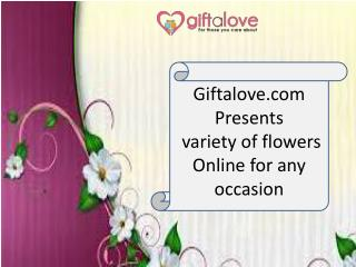 Giftalove presents Variety of Flowers for all Occasion