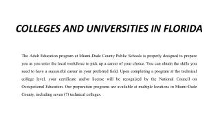 colleges and universities in florida