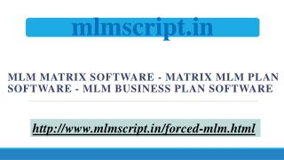 MLM Business Plan Software - MLM Matrix Software - Matrix MLM Plan Software