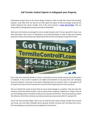 Call Termite Control Experts to Safeguard your Property