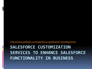 SALESFORCE CUSTOMIZATION SERVICES TO ENHANCE SALESFORCE FUNCTIONALITY IN BUSINESS