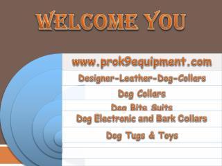 leather dog collars custom