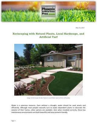 Xeriscaping with Natural Plants, Local Hardscape, and Artificial Turf