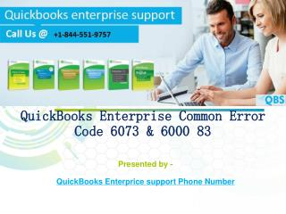 QuickBooks Enterprise Error code 6073