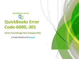 QuickBooks Error Code-6000,-301