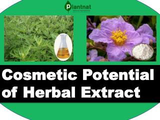 Cosmetic Potential of Herbal Extract