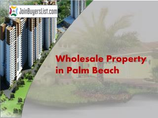 Wholesale Property in Palm Beach
