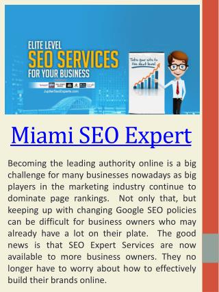 Top SEO Experts Miami