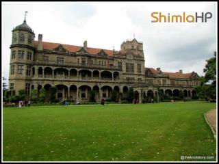 Shimla Weather   Shimla Temperature