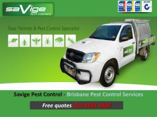 Savige Pest Control - Brisbane Pest Control Services
