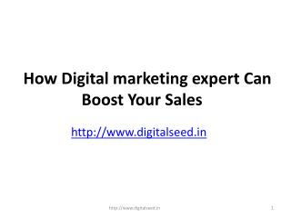How Digital marketing expert Can Boost Your Sales