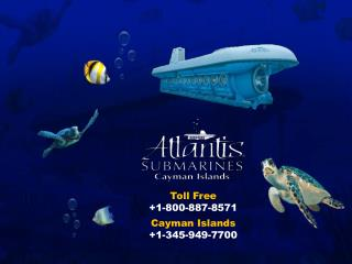 Interested in Cayman Islands submarine excursion tour? Know more