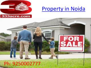 property in noida 333acre