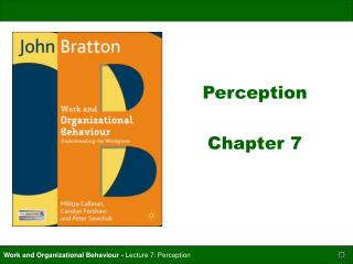 Perception Chapter 7