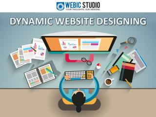 Dynamic Website Designing Company 011-64556400