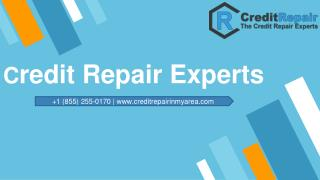 Hire Credit Repair Experts