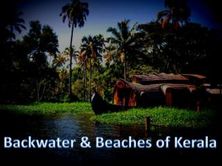 Backwater & Beaches of Kerala