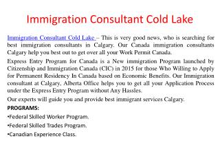 Immigration Consultant Cold Lake