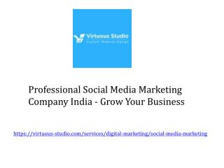 Professional Social Media Marketing Company India