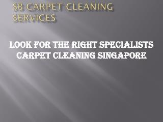 Look for the right specialists carpet cleaning Singapore