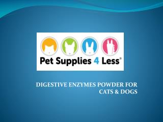 Digestive Enzyme for Pets