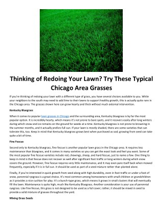 Thinking of Redoing Your Lawn? Try These Typical Chicago Area Grasses