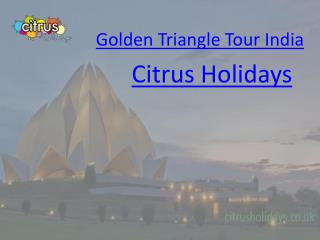 Golden Triangle India Tour - Citrus Holidays