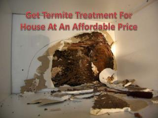 Get Termite Treatment For House At An Affordable Price