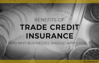 How Can Trade Credit Insurance Help Businesses To Boost Their Sales?