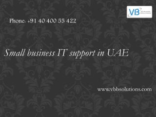 Small business IT support in UAE