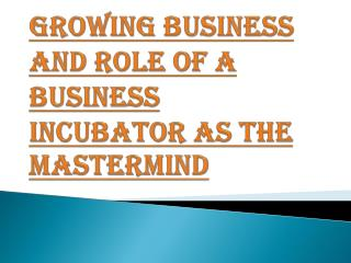 Role of a Business Incubator As The Mastermind