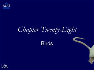 Chapter Twenty-Eight
