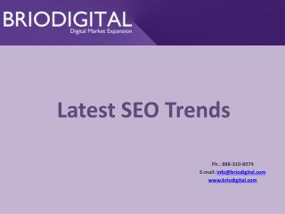 Latest SEO Trends