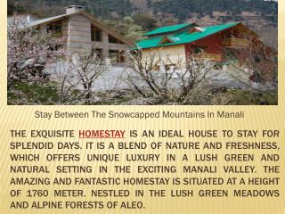 Stay Between The Snowcapped Mountains In Manali