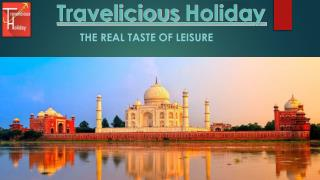 Travelicious Holiday: Best Tour and Travel Company in India