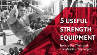 5 useful strength equipment & the muscles they target