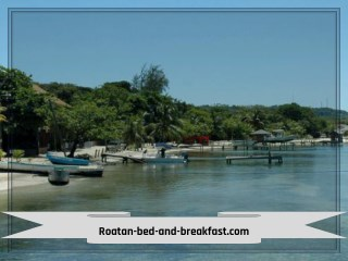 restaurants in Roatan west bay